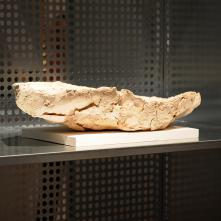Casier 21 A, Musée Rath - 2011